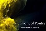 Logo Flight of Poetry